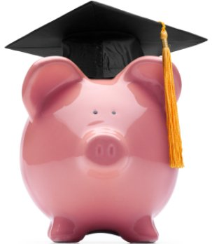 Curious how much student loan debt you have?